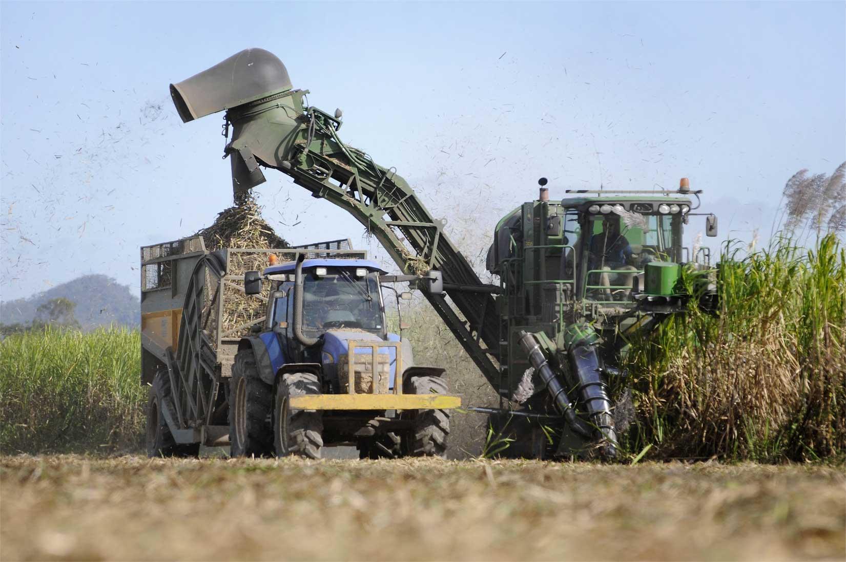 Image - Sugar industry machinery harvesting sugar cane