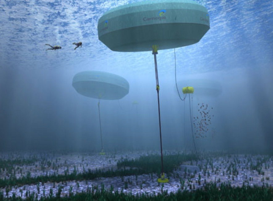 CETO 6 wave energy technology