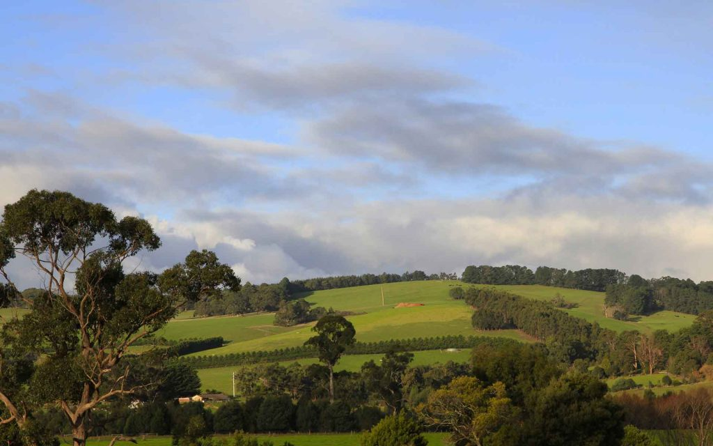 Hilltop view of the Latrobe Valley