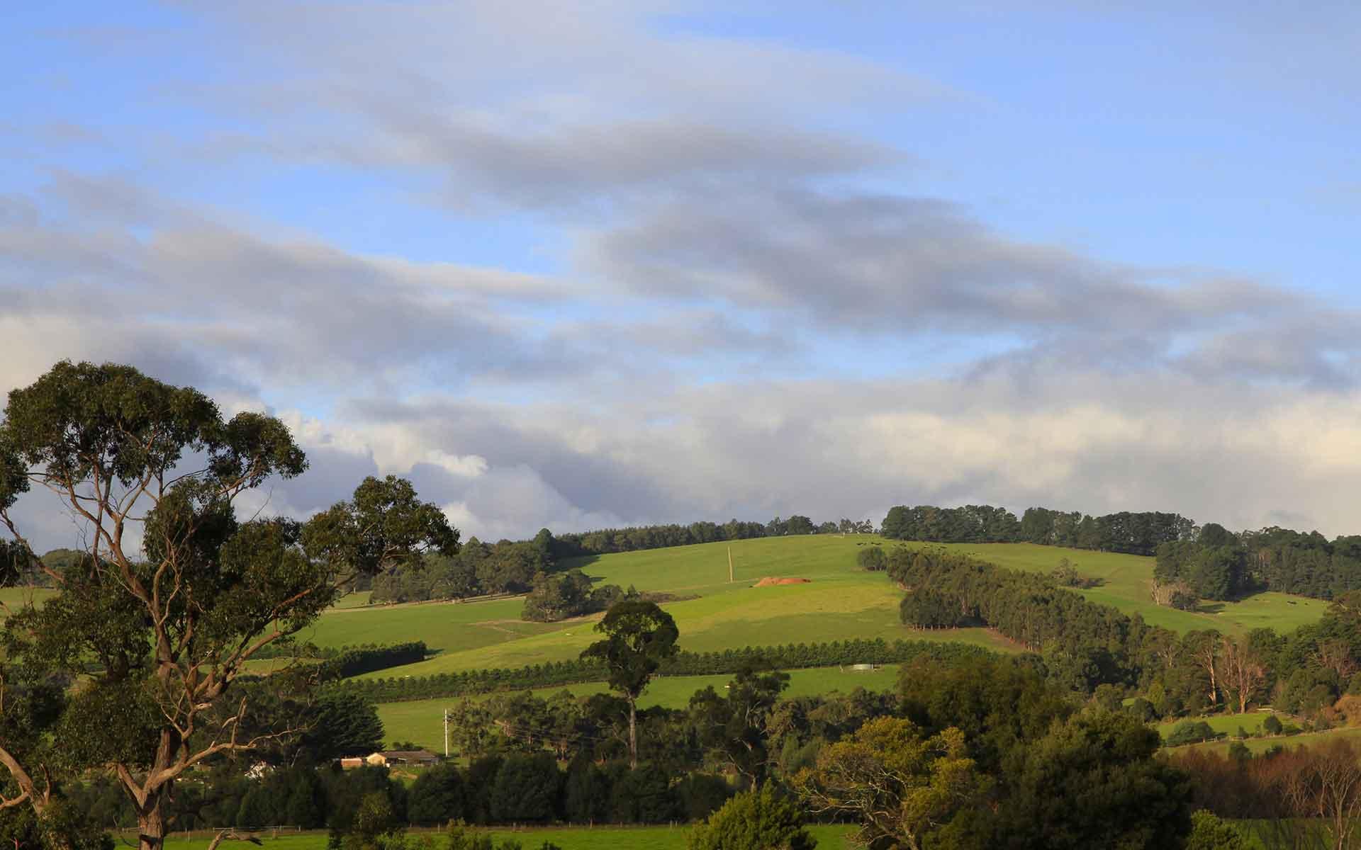 Image - La Trobe Valley view