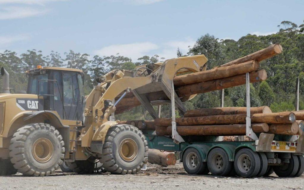 Hardwood Residue Bio-refinery