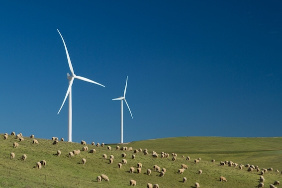 Results in from Hornsdale Wind Farm FCAS trial Image