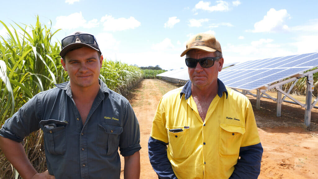 Two workers at the sugarcane farm with solar panels in the background